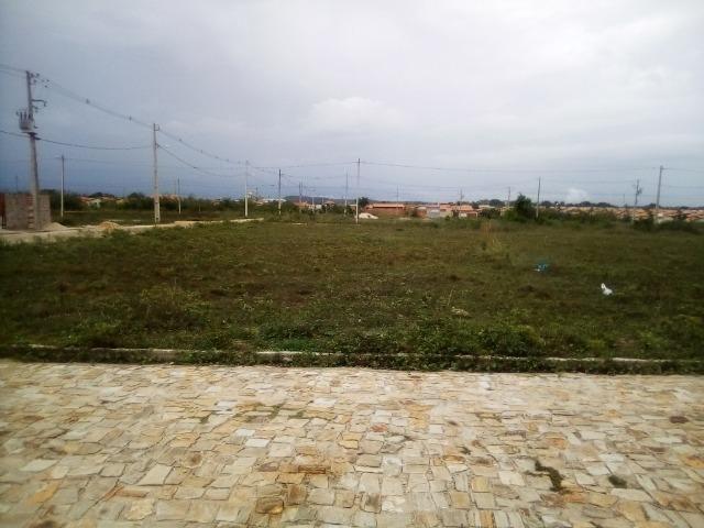 Terreno em Altos-Pi - Foto 2