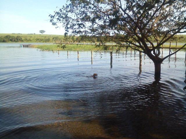 Rancho adolfo cond sobradinho- Pé na agua 550mil- lindo ac troca - Foto 4