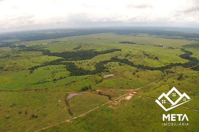 Fazenda Rondonia / parecis / pimenta Bueno. - Foto 4