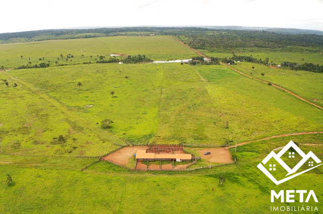 Fazenda Rondonia / parecis / pimenta Bueno. - Foto 9