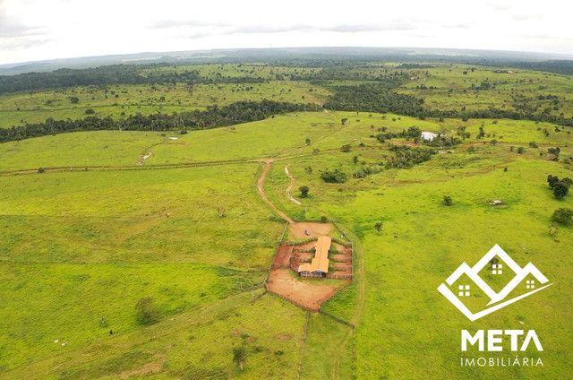 Fazenda Rondonia / parecis / pimenta Bueno. - Foto 10