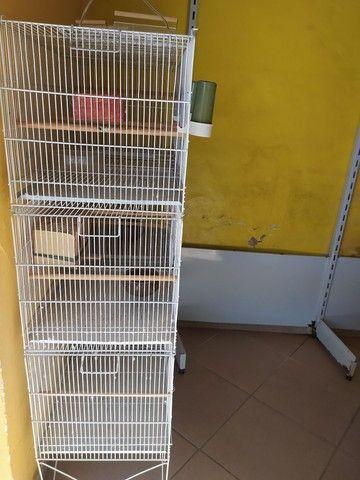 Viveiro expositor para pássaros.  - Foto 2