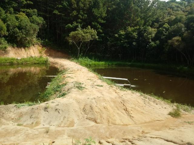 Terreno em lagoa dos ferreiras Mandirituba 24.200m 1 alqueire - Foto 8