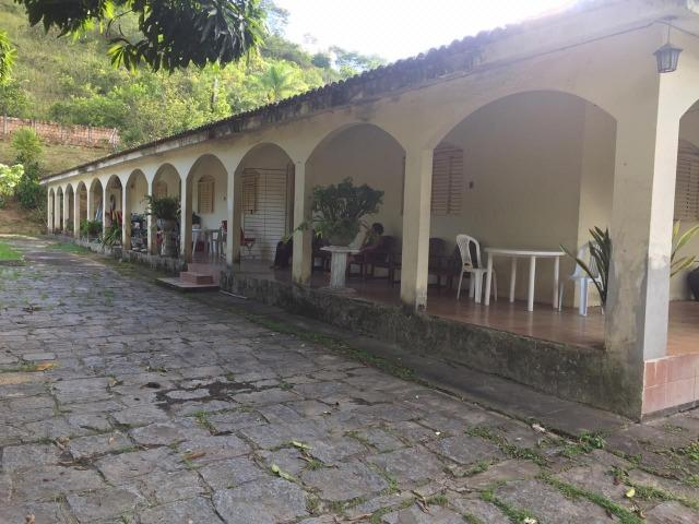 Vendo Chácara em Ribeirão PE - 10 hectares - Foto 3