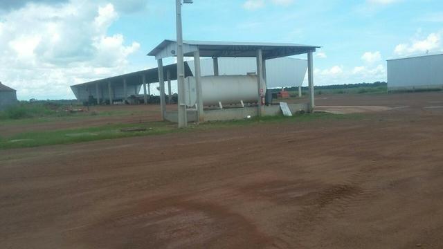 Fazenda de 16.250 Alqueires Paulista, Na Região de Confresa MT - Foto 13