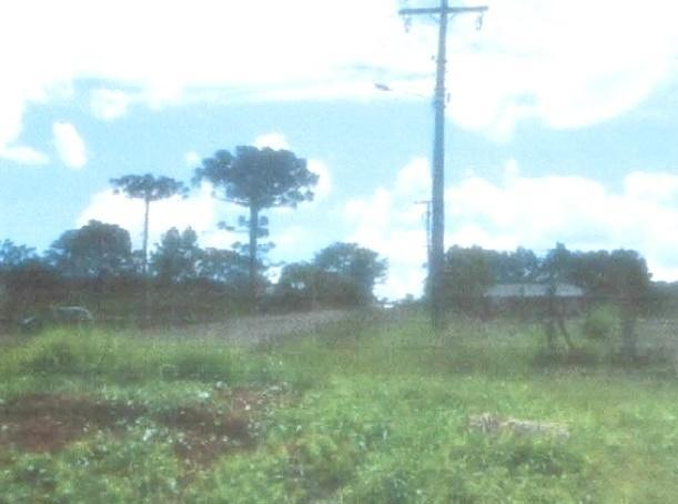 Terreno à venda, 8100 m² por r$ 315.000,00 - vila bela - guarapuava/pr - Foto 2