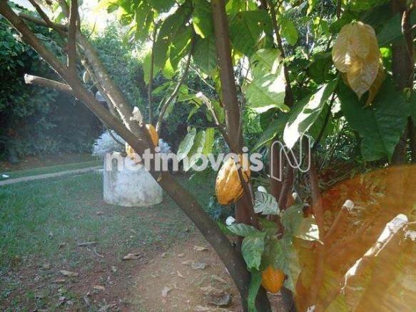 Casa à venda com 2 dormitórios em Braúnas, Belo horizonte cod:789152 - Foto 20