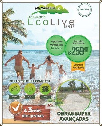 ^^ Loteamento Ecolive Tapera ^^  - Foto 2