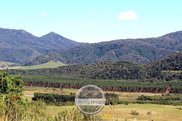 Terreno as margens da BR 282 em Bom Retiro - Foto 13