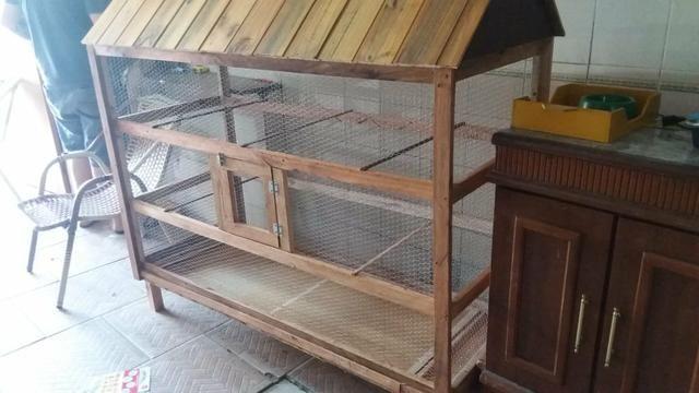 Viveiros para passarinho, coelhos, galo, galinha, porquinho da índia, etc - Foto 5