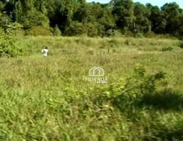 Terreno à venda, 40.920m² por R$ 690.000 - Barra Grande - Maraú/BA - Foto 11