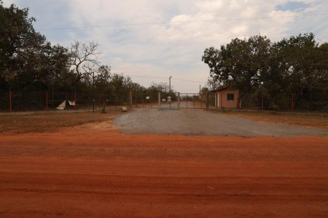 Terreno 5000 m2 na Guia - Foto 7