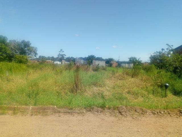 Terreno vila acre - Foto 2