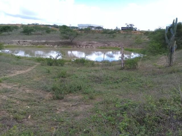 Excelente área de terra às margens da BR 116, com 614.196m - Foto 14