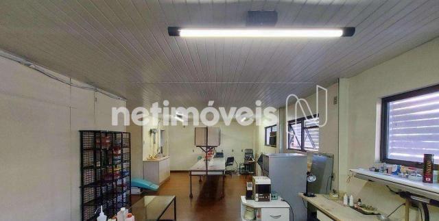 Casa à venda com 5 dormitórios em Santa efigênia, Belo horizonte cod:818103 - Foto 13