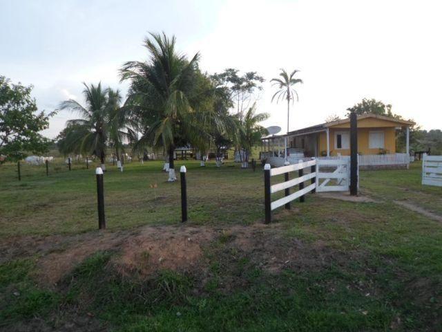 Chácara com 4 hectares localizada na Vila do