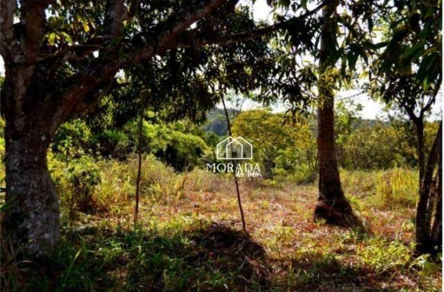 Terreno à venda, 40.920m² por R$ 690.000 - Barra Grande - Maraú/BA - Foto 7