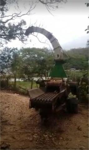 Picador Florestal