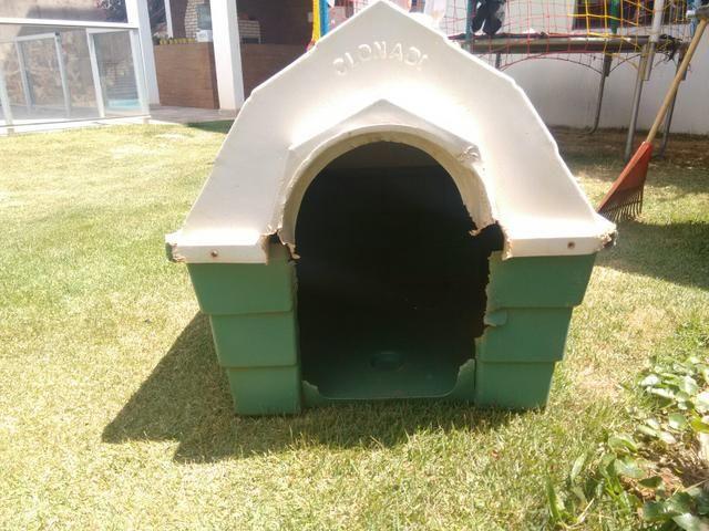 Casa de cachorro/ passo cartão - Foto 2