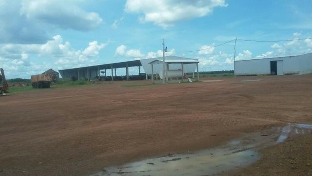 Fazenda de 16.250 Alqueires Paulista, Na Região de Confresa MT - Foto 3