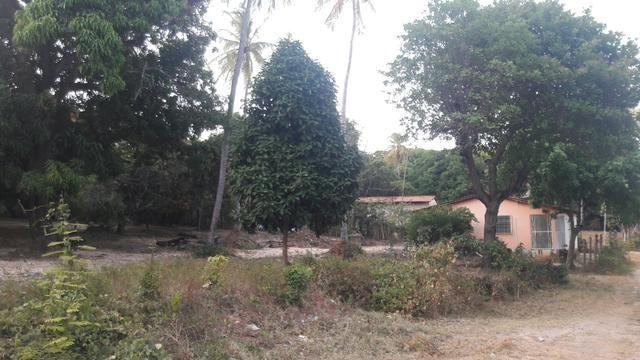 Vendo este lindo sítio em São José de Ribamar - Foto 2