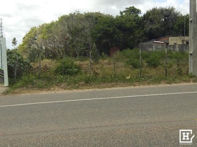 Terreno à venda - mosqueiro (zona de expansão) - Foto 13