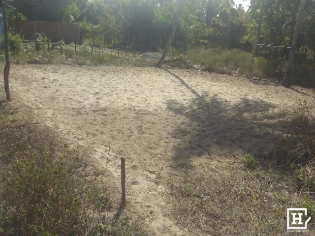 Terreno à venda - robalo (zona de expansão) - Foto 2