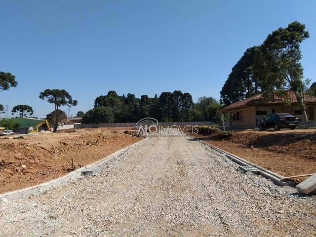 Terreno à venda, 157 m² por r$ 209.462,55 - pinheirinho - curitiba/pr - Foto 19