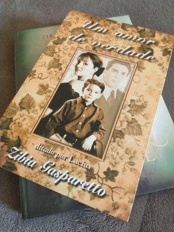 Livros Zibia Gasparetto