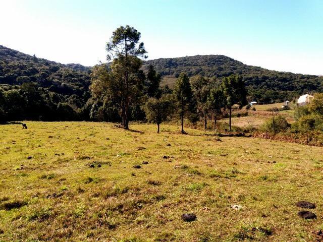 Chácara com casa em Fazenda SOuza - Foto 6