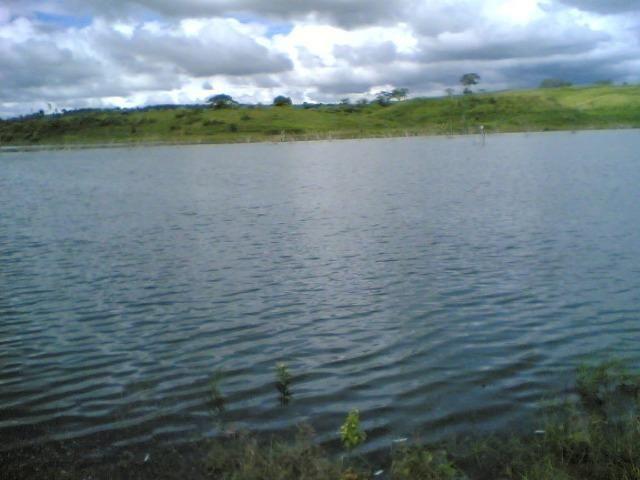 Cumaru=Vend. 15 mil p-Hect. Fazenda =Casa,Energia,Água,Piscina e muito mais - Foto 16