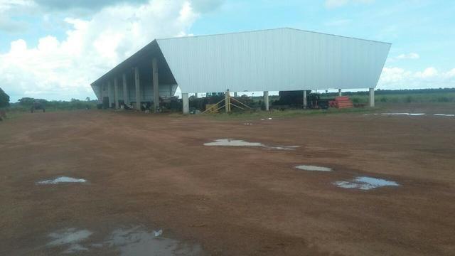 Fazenda de 16.250 Alqueires Paulista, Na Região de Confresa MT - Foto 10