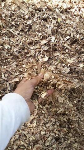 Raspa de madeira , maravalha - Foto 3