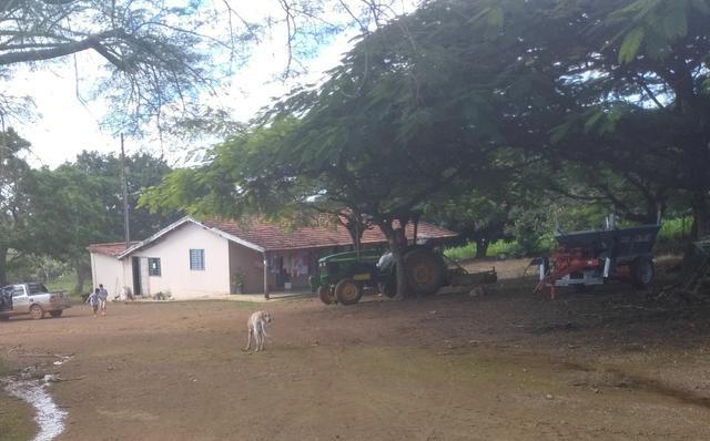 Fazenda com 83ha bem localizada, em Patrocínio!!