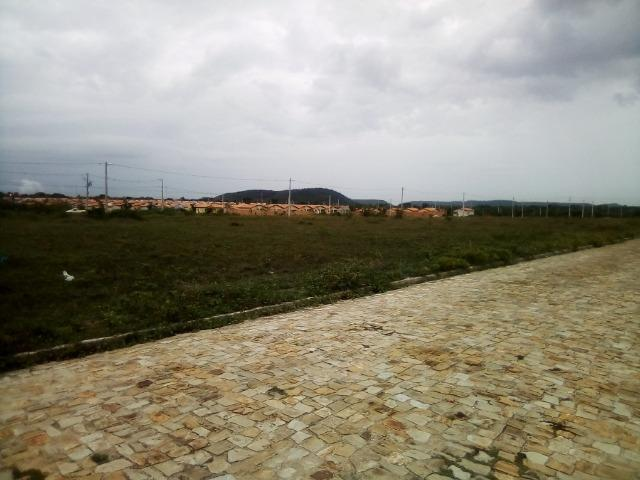 Terreno em Altos-Pi - Foto 3