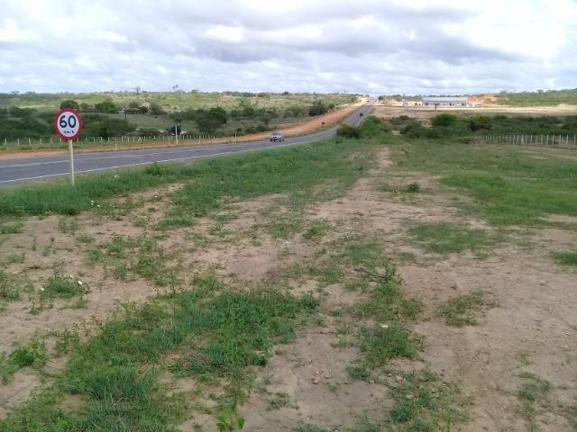 Excelente área de terra às margens da BR 116, com 614.196m - Foto 13