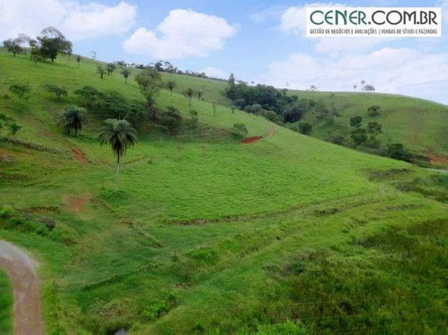 1870/Ótima fazenda de 480 ha extremamente bem localizada entre Congonhas e Lafaiete - Foto 20