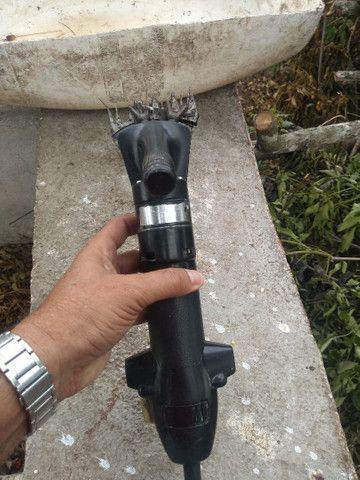 Máquina para tosar Carneiros - Foto 2