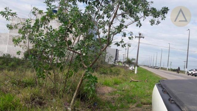Terreno à venda, 20000 m² por r$ 9.000.000,00 - barra - macaé/rj - Foto 5
