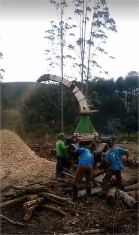 Picador Florestal - Foto 2