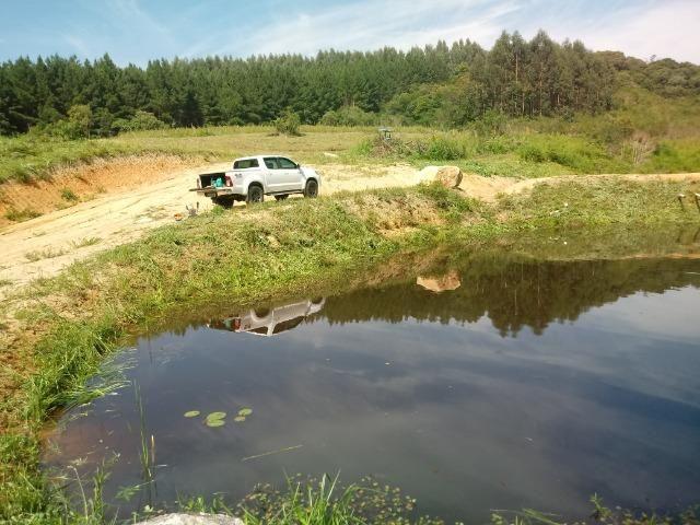 Terreno em lagoa dos ferreiras Mandirituba 24.200m 1 alqueire - Foto 6
