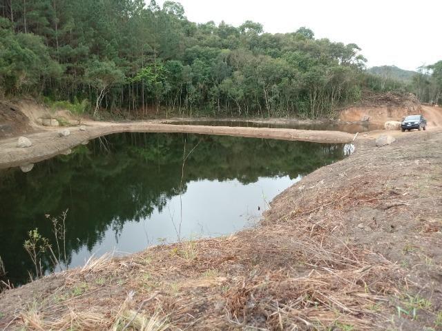 Terreno em lagoa dos ferreiras Mandirituba 24.200m 1 alqueire - Foto 4