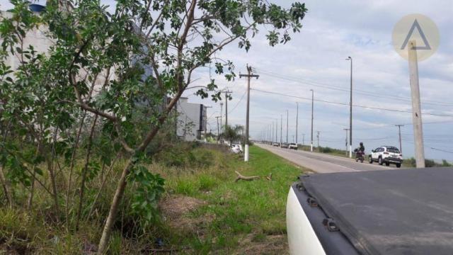 Terreno à venda, 20000 m² por r$ 9.000.000,00 - barra - macaé/rj - Foto 2