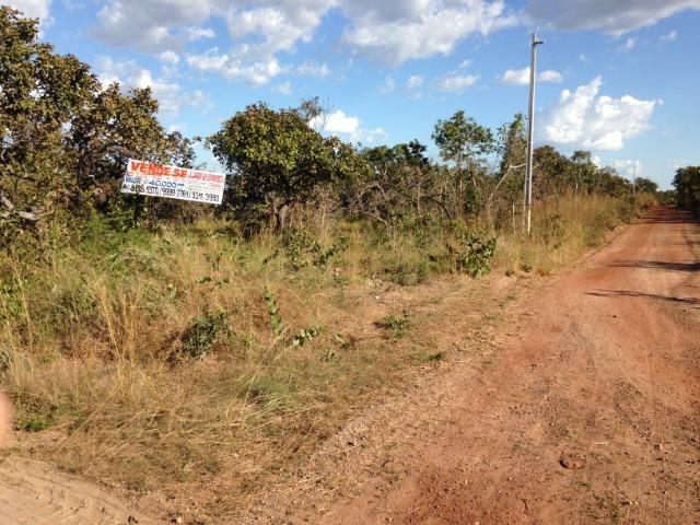 Terreno 5000 m2 na Guia - Foto 11