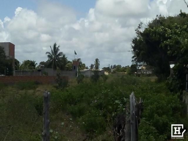 Terreno à venda - mosqueiro (zona de expansão) - Foto 8