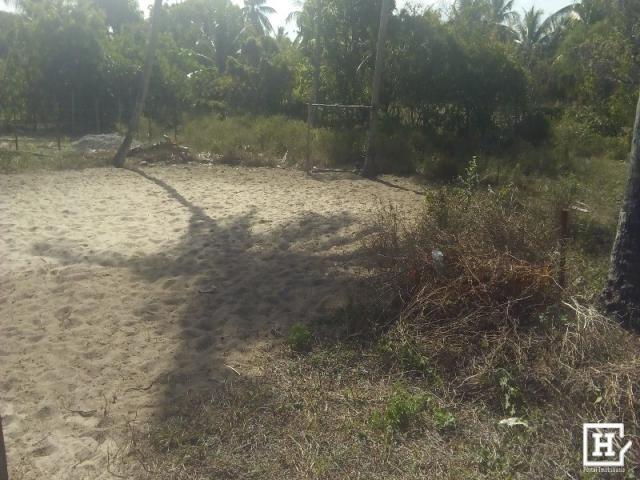 Terreno à venda - robalo (zona de expansão) - Foto 7