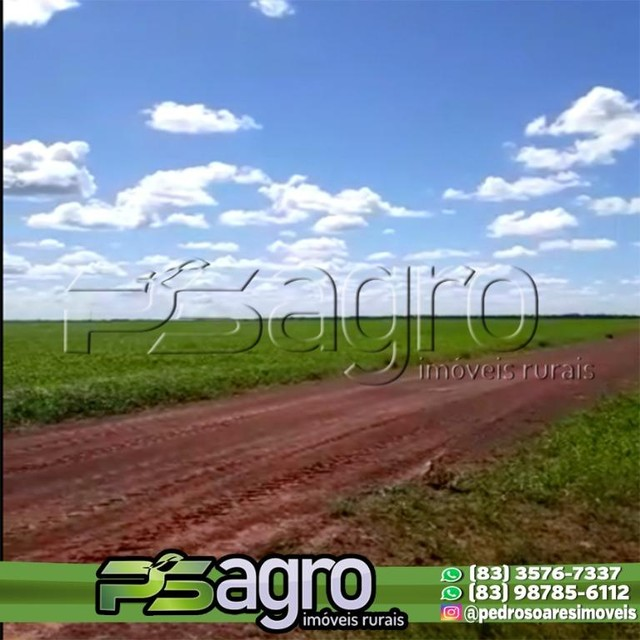 Fazenda à venda, 25000 hectares por R$ 112.000.000 - Zona Rural - Alto Boa Vista/MT - Foto 2