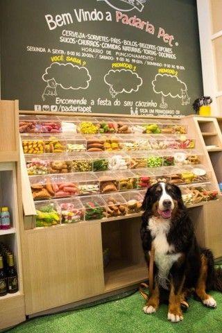 Móveis para Pet shop - preço justo e qualidade!!!  - Foto 5