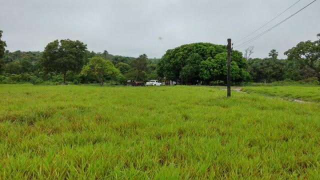 Fazenda Cuiabá Livramento 305,65hect