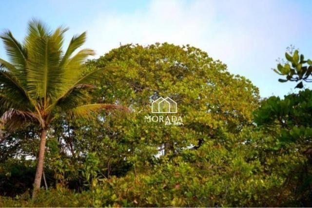 Terreno à venda, 40.920m² por R$ 690.000 - Barra Grande - Maraú/BA - Foto 10